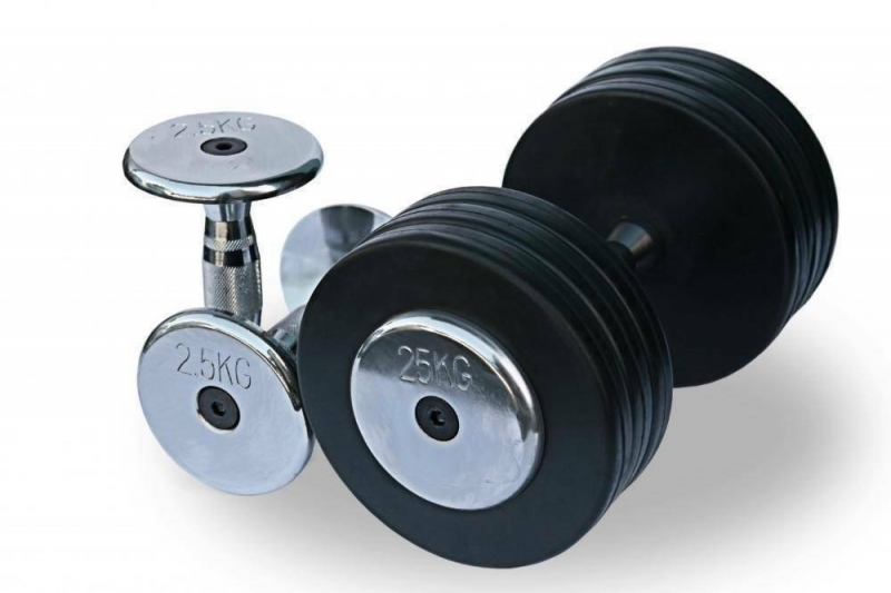Гантельный ряд 2,5-25 кг. Fitnessport FDS-03