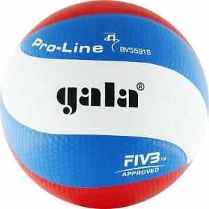 Мяч волейбольный  GALA Pro-Line 10 FIVB арт.BV5591S, р. 5,FIVB Appr,синт.к. ПУ Microfiber,клеен,бел-гол-кра