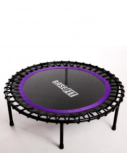 Батут TR-501 101 см, фиолетовый, BaseFit
