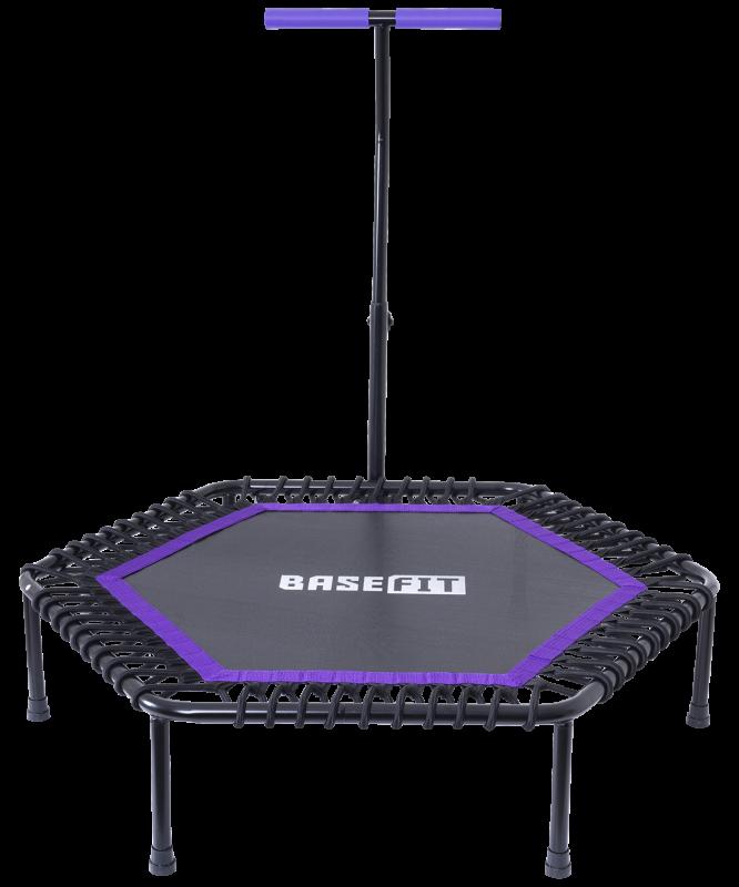 Батут TR-401 101 см с держателем, фиолетовый, BaseFit